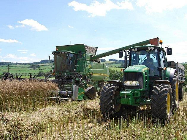 I když by řepce na jižním Plzeňsku prospělo ještě pár dnů zrání, prudké výkyvy počasí nutí zemědělce vyslat kombajny do polí. V okolí Nezvěstic se bude řepka sklízet až do konce příštího týdne.