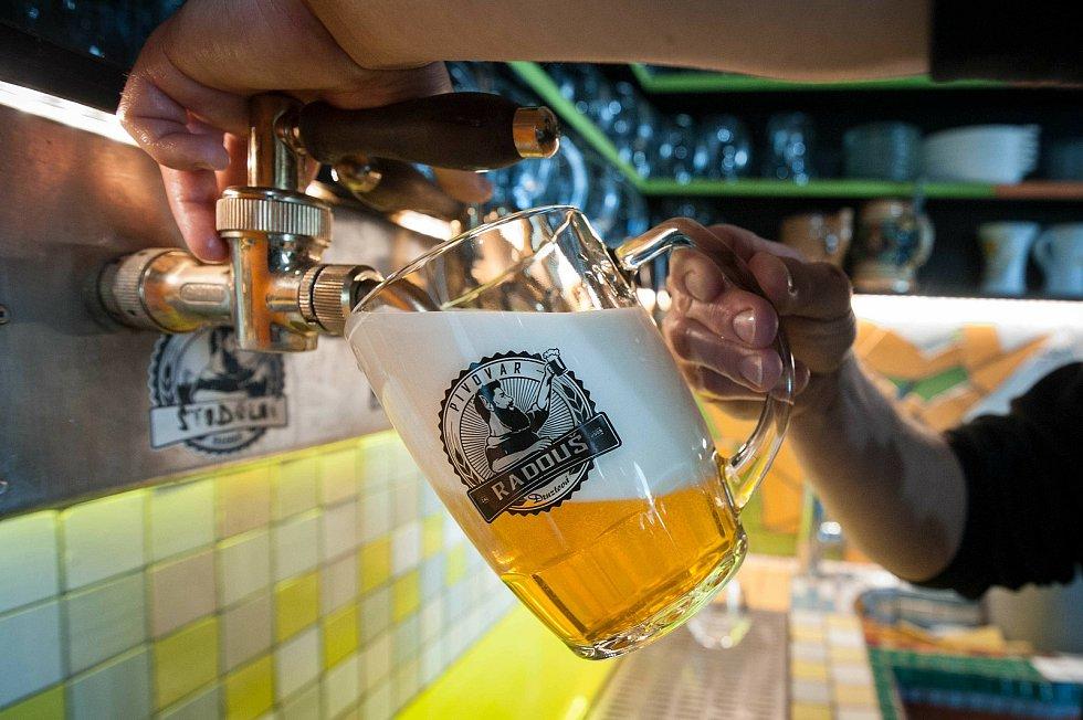 Pivo je již dostatečně uleželé a příznivci piva mohou ochutnávat.