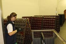 Zaměstnankyně opatrně přendavá lahve, v nichž je kvasinkový kal už usazený v hrdle láhve