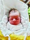 Václav Šiml se narodil 17. července v 1:20 mamince Pavle a tatínkovi Václavovi z Plzně. Po příchodu na svět ve FN vážil bráška dvouleté Anežky 3870 gramů a měřil 52 centimetrů.