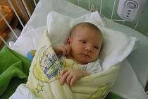 Tomášek ( 3,31kg, 49 cm) se narodil  24.9. ve 14:37 ve FN v Plzni. Na svět ho společně přivítali rodiče Lenka a Václav Vondrovic z Plzně, kteří by rádi poděkovali MUDr. Karbanové a porodní asistentce paní Zolotové za vynikající přístup a skvělou péči