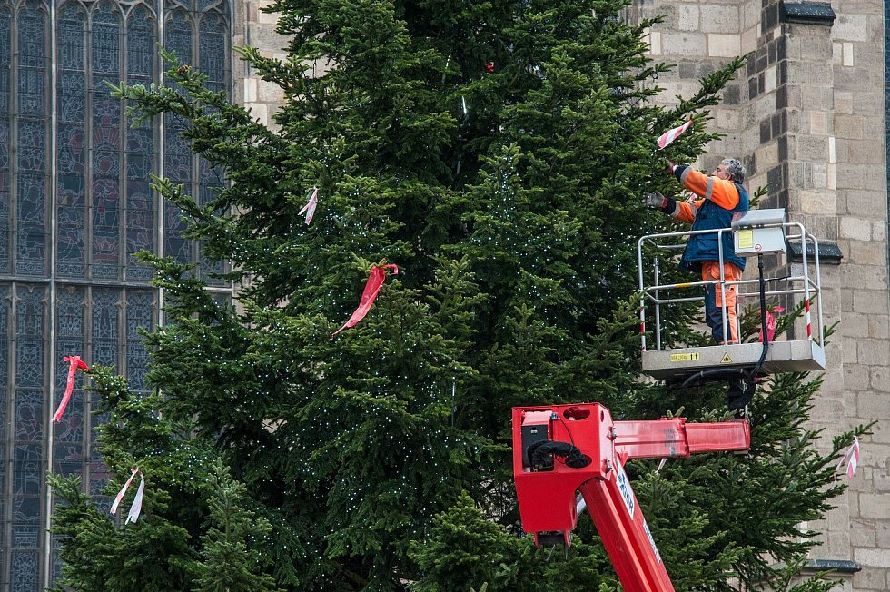 Zdobení vánočního stromu na náměstí Republiky v Plzni.