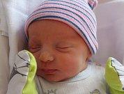 Matěj Šimán se narodil 6. srpna v 11:31 mamince Petře a tatínkovi Miroslavovi z Plzně. Po příchodu na svět ve Fakultní nemocnici v Plzni na Lochotíně vážil bráška Terezky 3050 gramů a měřil 49 centimetrů.