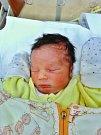 Jaroslav Musil se narodil 10. listopadu ve 4:08 mamince Haně a tatínkovi Jaroslavovi z Domažlic. Po příchodu na svět v plzeňské FN vážil bráška třináctileté Elly 2620 gramů a měřil 47 cm.