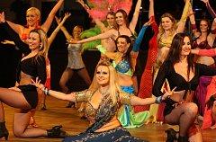 V plzeňském Pekle se v sobotu uskutečnil ples Centra tance.