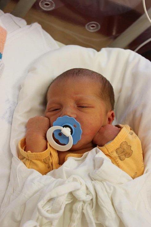 Adam (3,63 kg, 52 cm) se narodil 1. února ve 12:38 ve Fakultní nemocnici v Plzni. Na světě jej přivítali maminka Romana a tatínek Petr Fleisigovi z Točníku