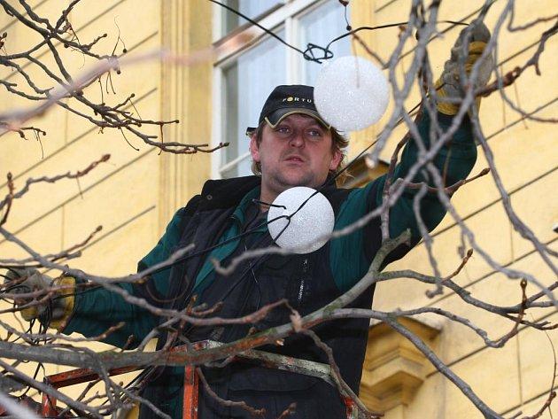 Pracovníci Správy veřejného statku města Plzně včera zdobili stromy v centru Plzně.