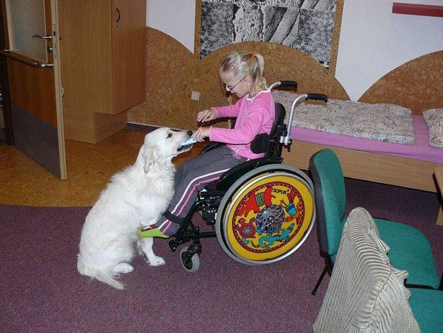 Nikolka s asistenčním psem Péťou