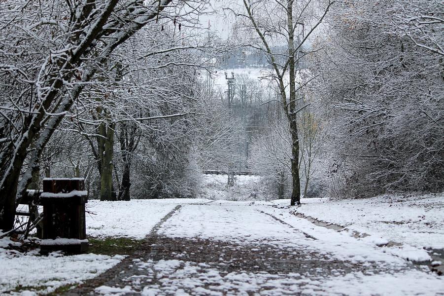 Borský park a první sníh.