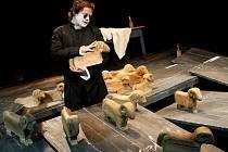 Slovenské národní divadlo z Bratislavy je v pátek hostem plzeňského festivalu Divadlo. Uvede inscenaci Hollyroth s jediným protagonistou – hercem Robertem Rothem