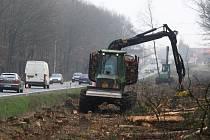 Podél silnice na Domažlice už se od minulého týdne kácí pruh  lesa, který ještě nedávno sahal až k vozovce. Teď se začne s vytrháváním kořenů