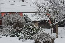 Radnice na Rokycansku pod sněhem 10. března.