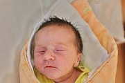 Monika Vopičková se narodila 14. října v 8:19 rodičům Veronice a Václavovi z Merklína. Po příchodu na svět v klatovské porodnici vážila jejich prvorozená dcera 3010 gramů a měřila 48 cm