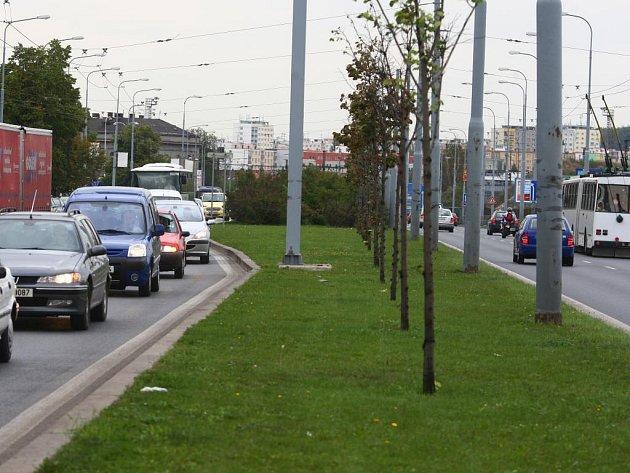 Zelený pás uprostřed ulice U Prazdroje má ustoupit  jízdnímu pruhu určenému pouze městské dopravě