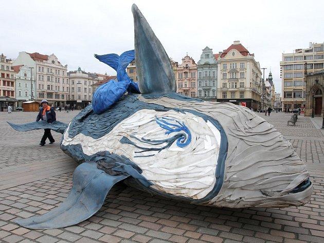 Velryba se přesunula do plzeňské ZOO
