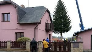 OBRAZEM: Vánoční strom už míří do Plzně