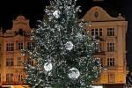Vánoční strom v Plzni