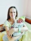 Maxim Horálek se narodil 25. července v 11:34 mamince Markétě a tatínkovi Tomášovi z Plzně. Po příchodu na svět ve FN vážil bráška Pavlínky 3510 gramů a měřil 51 cm.