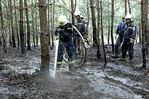 Požár lesa mezi Sulkovem a Novou Vsí likvidovali profesionální hasiči z Nýřan spolu s dobrovolnými sbory Nýřany, Líně a Tlučná