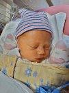 Vanessa Alexandr se narodila 28. listopadu v18:19 mamince Tereze a tatínkovi Jaroslavovi zPlzně. Po příchodu na svět ve FN vážila jejich prvorozená dcerka 3100 gramů a měřila 51 cm.