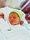 Štěpánka Baštová se narodila 14. července v 8:14 mamince Markétě a tatínkovi Michaelovi z Plzně. Po příchodu na svět v plzeňské FN vážila sestřička dvouleté Johanky 3190 gramů a měřila 50 centimetrů.