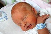 Dan Švamberg se narodil 20. března v 6 hodin ráno mamince Kláře a tatínkovi Petrovi z Blovic. Po příchodu na svět v rokycanské porodnici vážil bráška šestiletého Iva 3320 gramů a měřil 49 centimetrů.