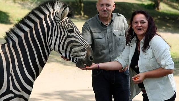 Petr Piskač a Kateřina Misíková se zúčastní expedice Uganda 2016. Náš snímek vznikl u zeber v plzeňské zoo