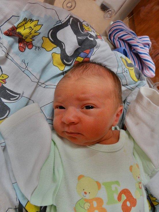 Jakub Novák se narodil 7. ledna ve 4:25 mamince Janě a tatínkovi Tomášovi zPlzně. Po příchodu na svět vplzeňské FN vážil jejich prvorozený synek 2900 gramů a měřil 49 centimetrů.