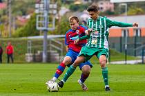 Viktoria Plzeň B - Hostouň 2:0.