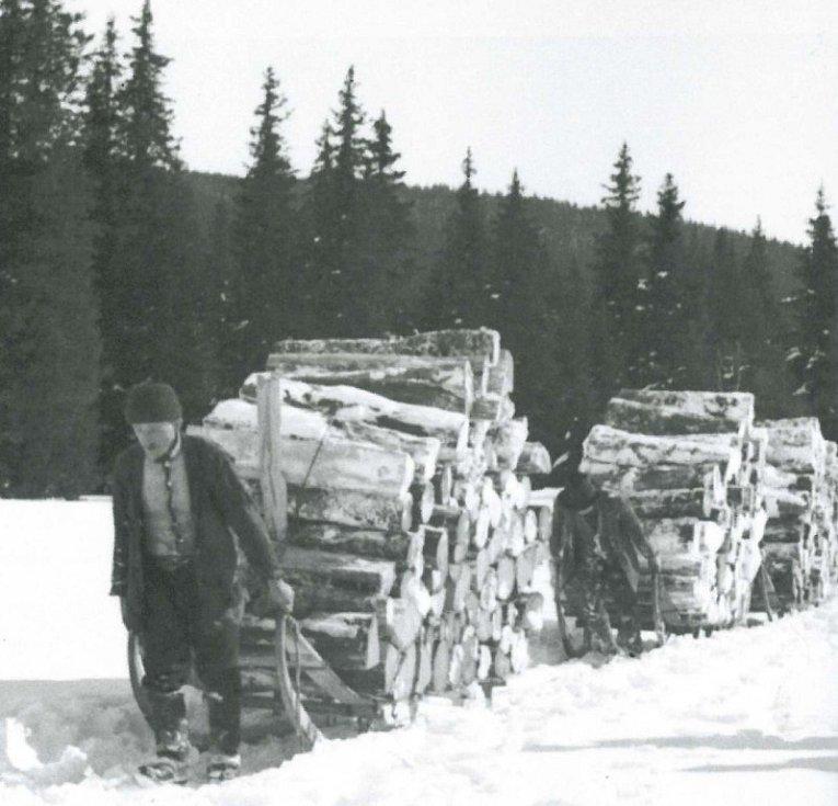 Namáhavá, vysilující a mnohdy životu nebezpečná práce šumavských dřevorubců