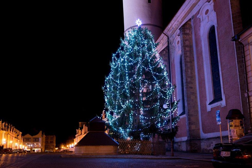 Vánoční strom v Domažlicích
