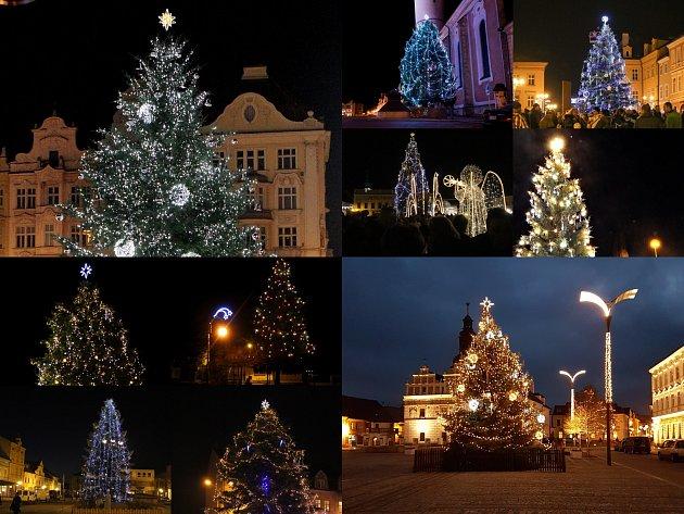 Vánoční stromy v západních Čechách