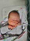 Josef Vůjta se narodil 25. prosince ve 23:58 mamince Adéle a tatínkovi Josefovi zPlzně. Po příchodu na svět vplzeňské porodnici U Mulačů vážil jejich synek 4700 gramů.