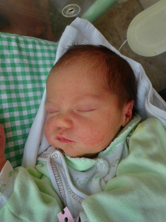 Natálka Malíková se narodila 22. února minutu po osmé hodině ranní mamince Alexandře a tatínkovi Janovi. Po příchodu na svět vážila sestřička šestileté Elly z Plzně 3660 gramů a měřila 51 centimetrů