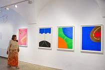 Výstava díla Karla Malicha