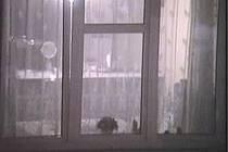 Záběr okna jednoho z bytů Na Belánce