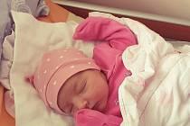Markéta Příborská z Plzně se narodila 8. října 2020 mamince Michaele a tatínkovi Markovi. Na malou sestřičku se moc těšila Michalka.
