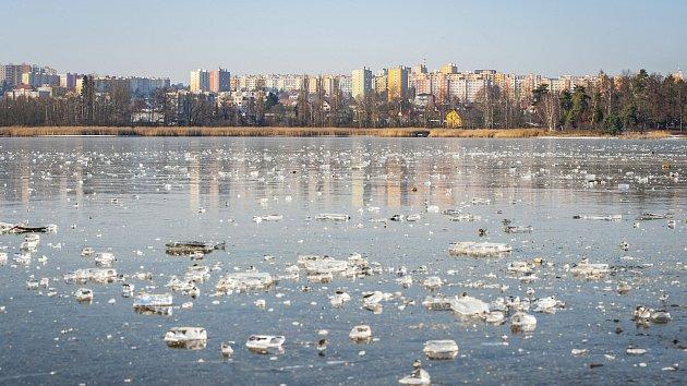 Zamrzlý Bolevecký rybník