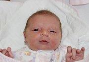 Barbora Svobodová se narodila 25. března v10:49 mamince Vendule a tatínkovi Pavlovi zPříchovic. Po příchodu na svět vklatovské porodnici vážila sestřička čtrnáctiměsíčního Jaromíra 2720 gramů a měřila 49 centimetrů.