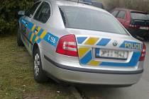 POLICEJNÍ VOZIDLO, které bylo zaparkováno na stejném místě, kde muži zákona o týden dříve rozdávali všem řidičům pokuty, rozpálilo některé návštěvníky burzy doběla.