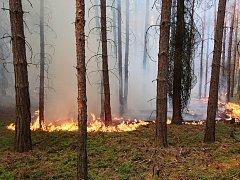 Požár lesa a pole u Horního Hradiště na severním Plzeňsku