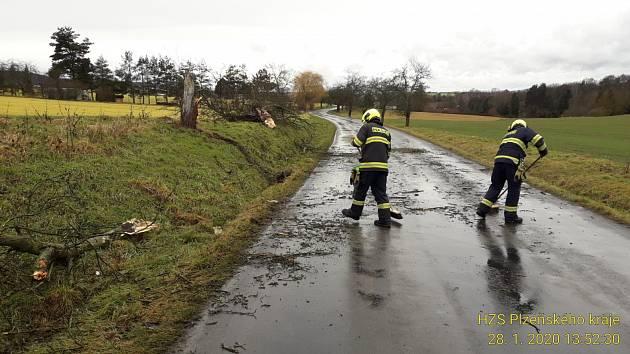 Hasiči odstraňují popadané stromy.