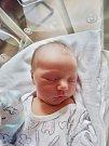 Vítězslav Procházka se narodil 3. května ve 2:12 mamince Anetě a tatínkovi Vítězslavovi zPlzně. Po příchodu na svět vplzeňské FN vážil bráška Natálky 3490 gramů a měřil 52 centimetrů.