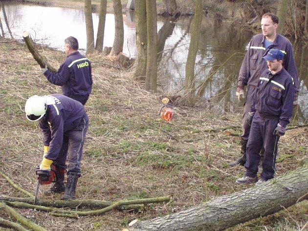 Touškovští dobrovolní hasiči zbavují břehy náhonu řeky Mže nebezpečných stromů