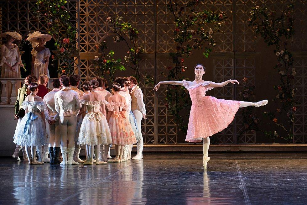 Mami Hagihara při generální zkoušce baletu Anastázie - poslední dcera cara v Divadle J. K. Tyla v Plzni.