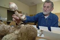 Mykolog Svatopluk Holec na výstavě hub v Pedagogickém centru v Plzni