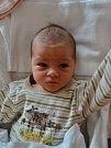 Adéla Lukešová se narodila 21. října ve 20:30 mamince Vendule a tatínkovi Milanovi z Bučí. Po příchodu na svět ve FN vážila sestřička patnáctileté Kristýnky 3100 gramů a měřila 48 cm