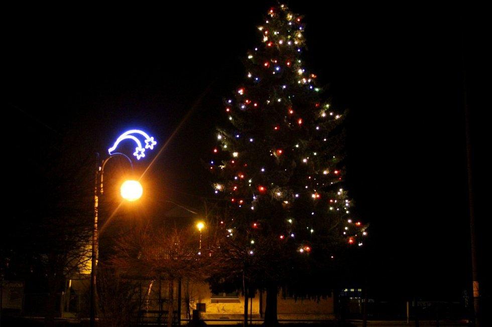 Vánoční strom v Tlučné na severním Plzeňsku