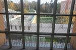 Věznice na Borech.