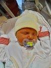 Šimon Šístek se narodil 28. listopadu v17:52 mamince Aleně a tatínkovi Petrovi zHrádku u Rokycan. Po příchodu na svět vplzeňské FN vážil bráška osmiletého Aleše 3030 gramů a měřil 48 centimetrů.